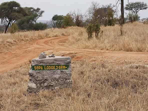 Tarangire Sopa Lodge - Road