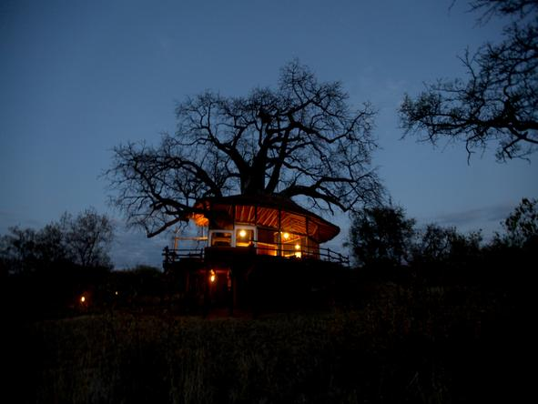 Tarangire Treetops - main lodge