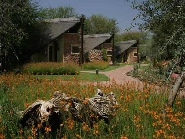Tau Game Lodge - Lodge
