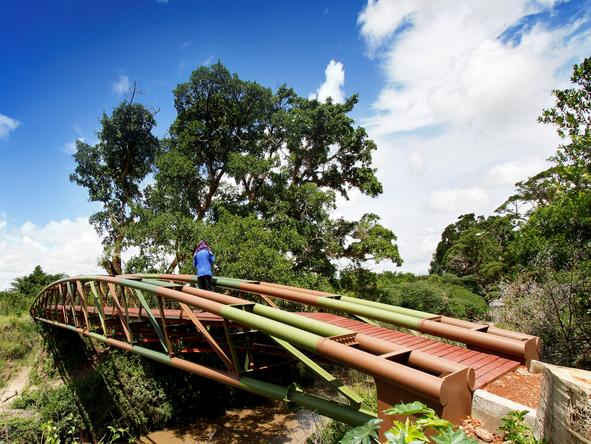 Tipilikwani Mara Camp - Bridge