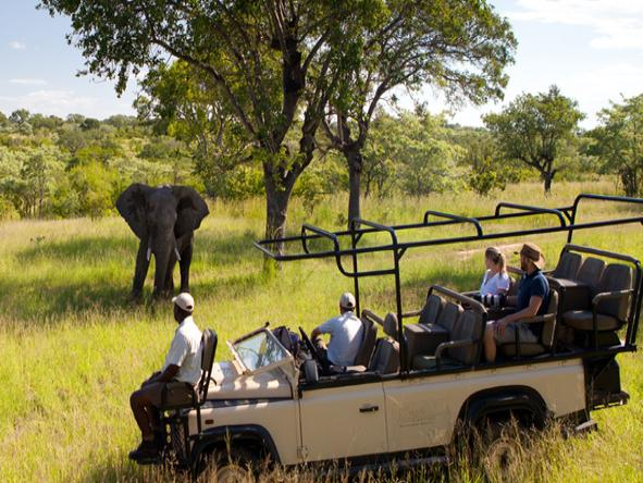 Ulusaba Safari Lodge - Game Drive