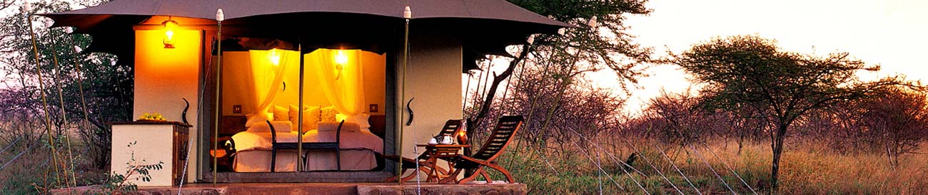 White Elephant Game Lodge