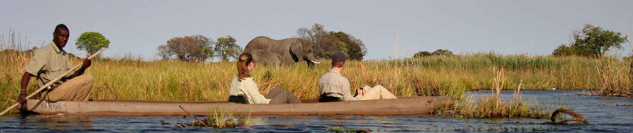 Affordable Fly-In Botswana Safari